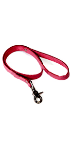 Pink Basics Leash  ~  KL246